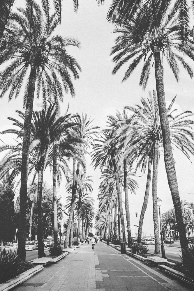 Palma_Fotografie_Nina